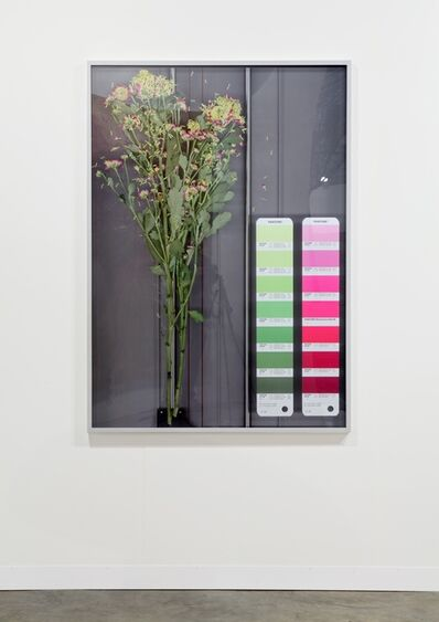Mathieu Mercier, 'Untitled (Scan Pantone 41 M, 21 M)', 2012