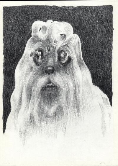 Marcos Sánchez, 'Poodle', 2017