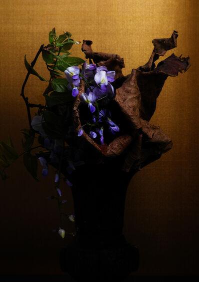 Keiichirô Muramatsu, 'violet', 2017