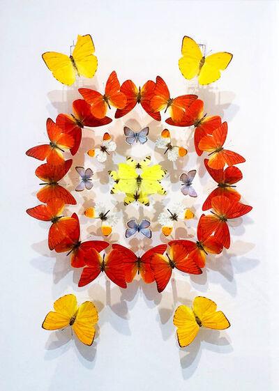 Charlotte Proudlove, 'Kaleidescope Orange', 2019