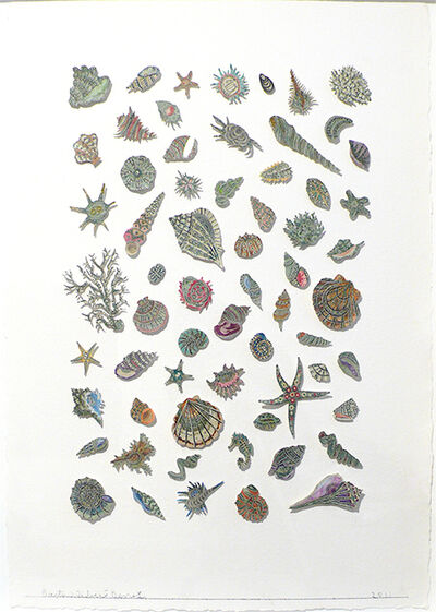 Barton Lidice Benes, 'Botanica (Shells)', 2011