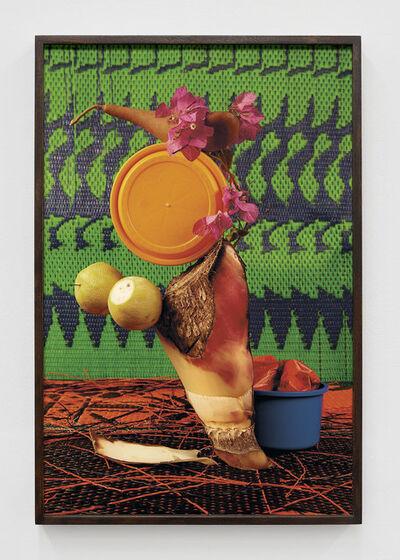 Lorenzo Vitturi, 'Banana Tree, Bougainvillea and Green Mat', 2017