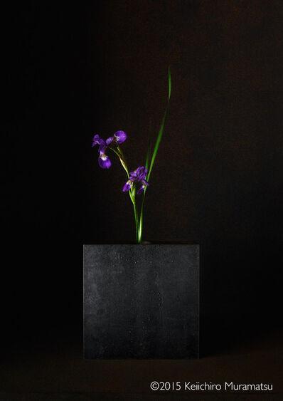 Keiichirô Muramatsu, 'A Stage Iris 4-2', 2015