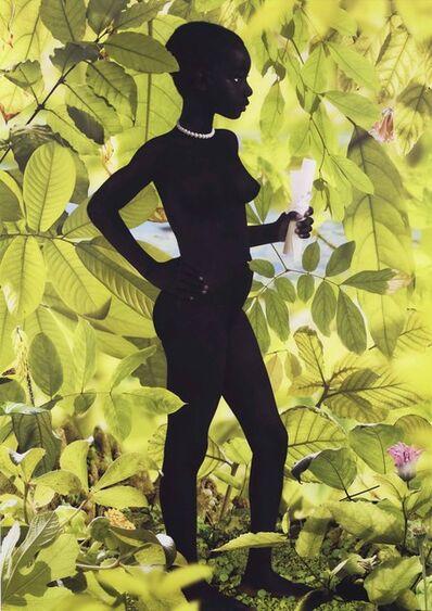 Ruud Van Empel, 'Serie Venus #6', 2007
