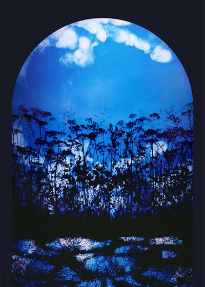 Susan Derges, 'Arch 4, Summer', 2007-2008