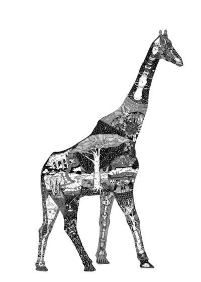 Christo Du Toit, 'Giraffe - Limited Edition Print'