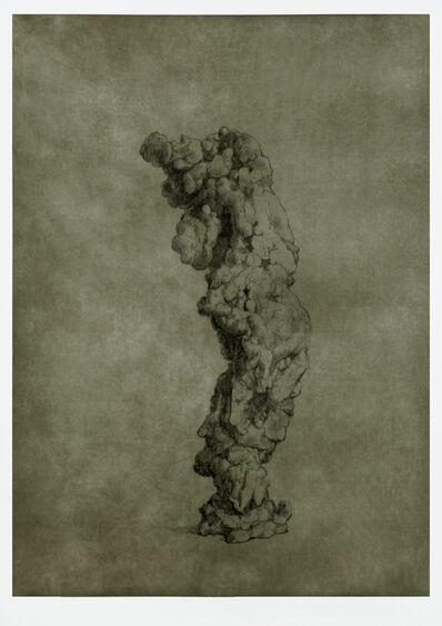 Shao Yinong & Mu Chen 邵逸农 & 慕辰, 'Objects of Nature - Nanzhao', 2014