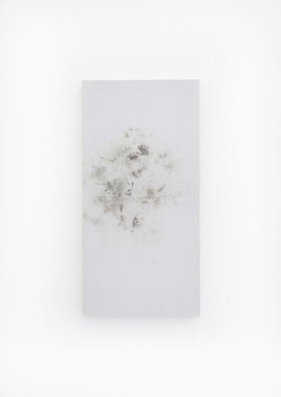 Tercerunquinto, 'nO SE nECESITA PERMISO PARA SER LIBRE', 2017