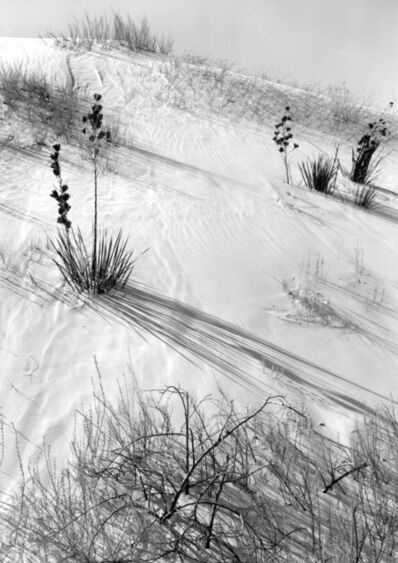 Ansel Adams, 'Dunes, Hazy Sun, White Sands National Monument, New Mexico', 1941
