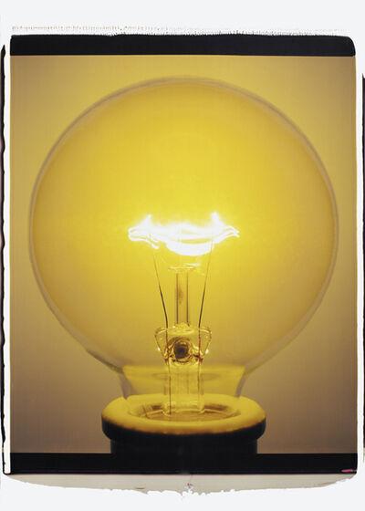 Amanda Means, 'Light Bulb (005Yb)', 2007