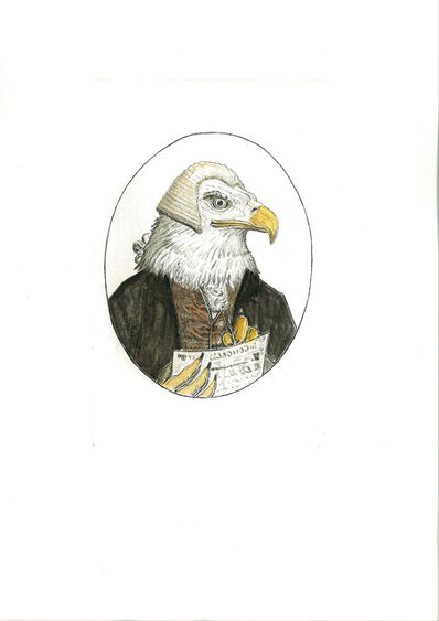 Bjorn Skaarup, 'Bald Eagle, USA', 2016