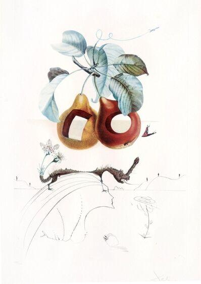Salvador Dalí, 'Les Fruits  troues', 1960