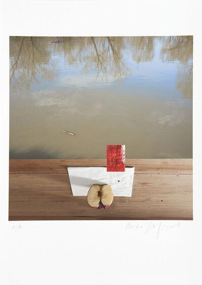Miro Zagnoli, 'Composizione_38 (Mela, tavolo, assorbente, acqua)', 2015