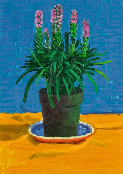 David Hockney, 'Plant on Yellow Cloth', 1995