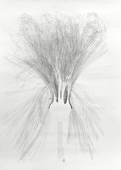 Hiroyuki Masuyama, 'NO. 08 Narcissus', 2020