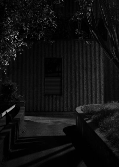 Alys Tomlinson, 'Untitled #2, Night Wanderings', 2020