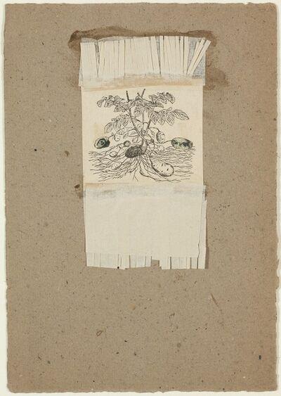 Robert Rauschenberg, 'Untitled [potatoes]', ca. 1952