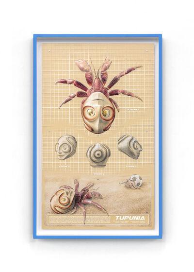 Charles Degeyter, 'Tupunia plate', 2021