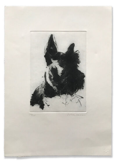 "Tony Scherman, '""Scottie""', 1998-2000"