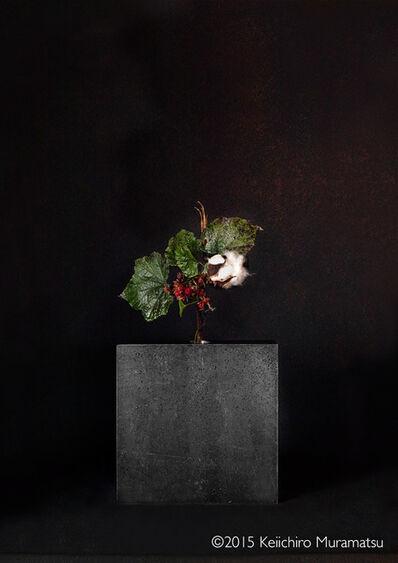 Keiichirô Muramatsu, 'A Stage Cotton 3-5', 2015