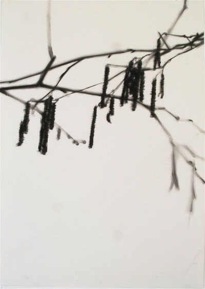 Carlijn Mens, 'Hazel catkins', 2019