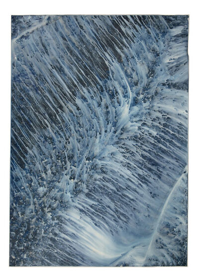 Meghann Riepenhoff, 'Ecotone #897 (Bainbridge Island, WA 05.15.20, Draped on Lilac, Showers)', 2020