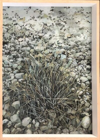 Isabella Kuijers, 'Riverbed, Greyton', 2019