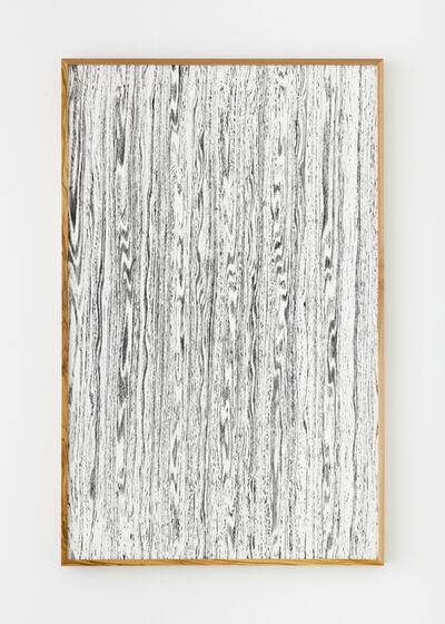 Lisa Oppenheim, 'Landscape Portraits (Olive) (Version I)', 2015