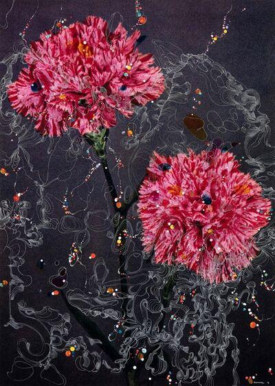 Sebastiaan Bremer, 'Dianthus Caryophyllus Hybrid Floris Verster II', 2016