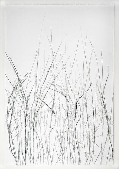 Linda Ridgway, 'Grassland I, Third State', 2018