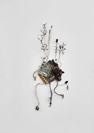 Kristof Kintera, 'Postnaturalia - Resistor Minimalist', 2018