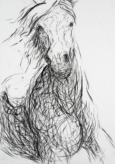 Alysa Bennett, 'Glimpse at a Gallop', ca. 2012