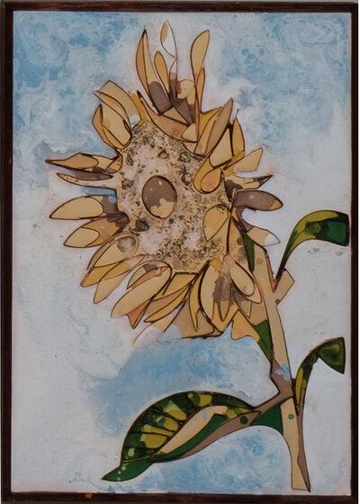 Ugo Schildge, 'Sunflower 10/50', 2020