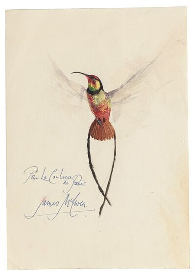 James Mc Ewen, 'Bird', 20th century