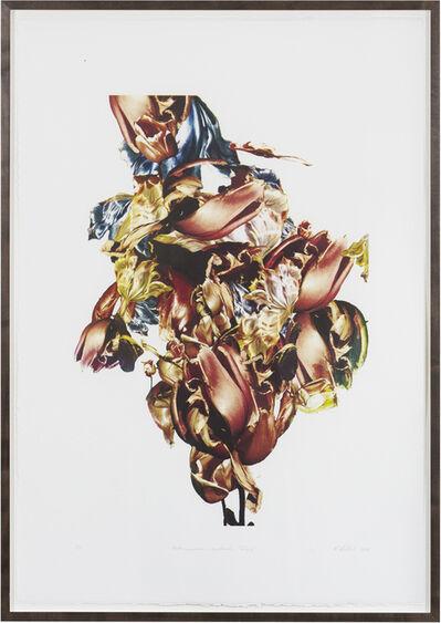 Renata Kudlacek, 'Metamorphosis Naturalis - Tulip I', 2018