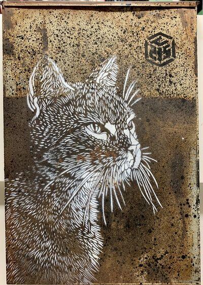 C215, 'Untitled (cat)', 2010