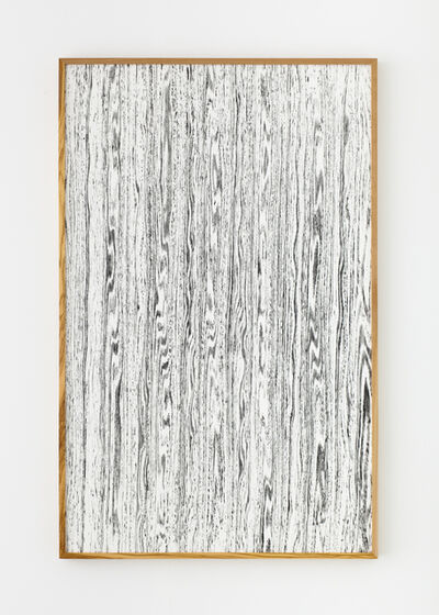 Lisa Oppenheim, 'Landscape portraits (Olive) (Version I)', 2015