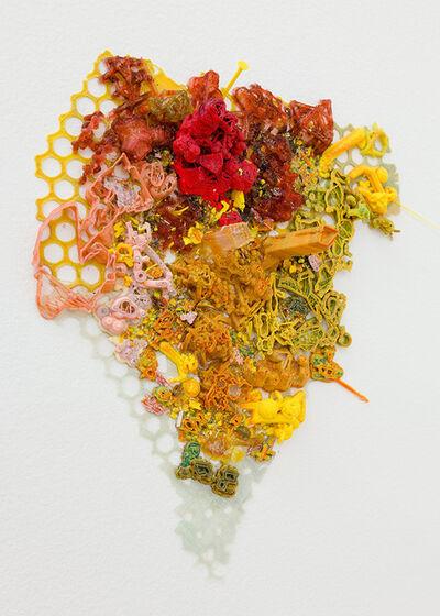Shane Hope, 'Freerange-Femtofacture-Lures No. 7', 2013
