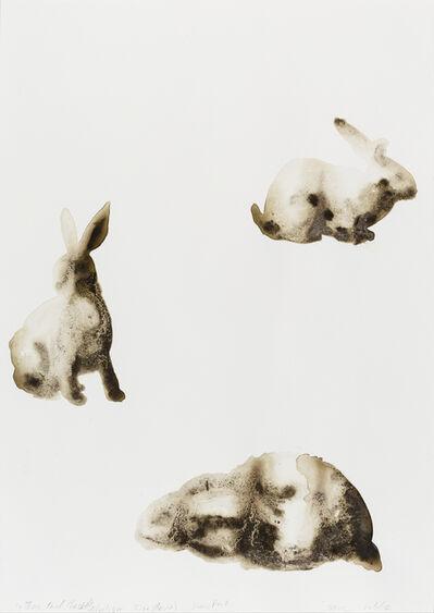 Alexis Rockman, 'Cottontail Rabbit (Sylvilagus floridanus)', 2014