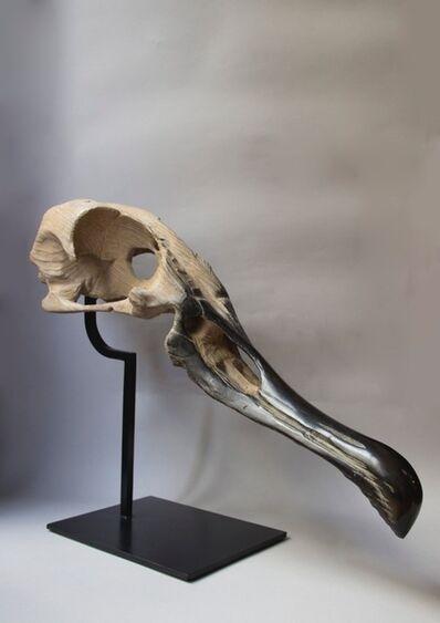 Quentin Garel, 'Crane d'Albatros', 2012