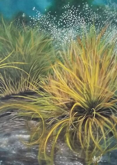 Mandi Maritz, 'Wet grass after the rain', 2019