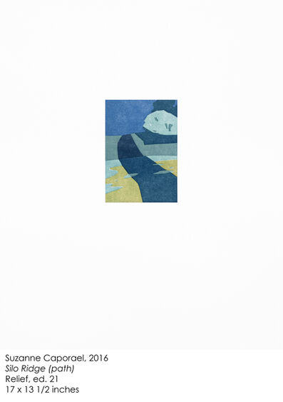 """Suzanne Caporael, '""""Silo Ridge (path),""""', 2016"""
