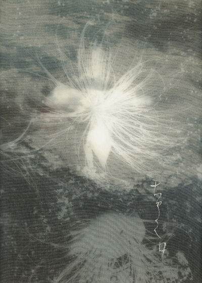 Chaco Terada, 'Nocturne V', 2015