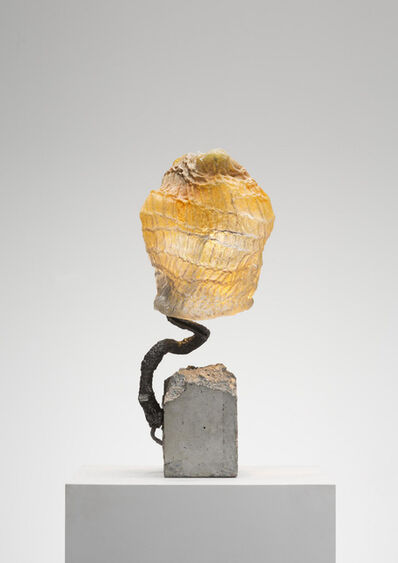 Nacho Carbonell, 'Growing Glass (144_2019)', 2019