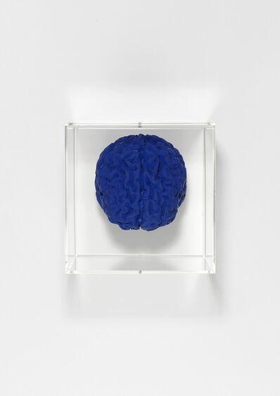 Angela Palmer, 'Brain of the artist in Yves Klein Blue', 2019