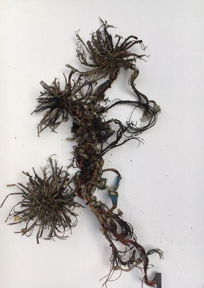 Kristof Kintera, 'Postnaturalia - Octopi Internet', 2018