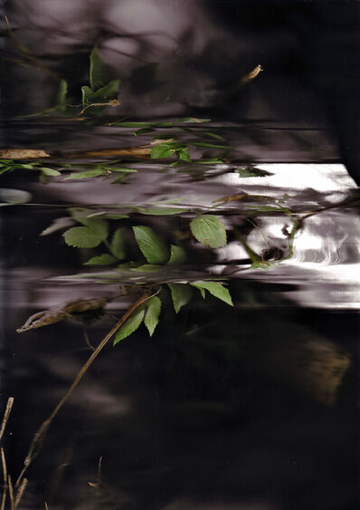 Patrick Beaulieu, 'Révélations 2', 2009