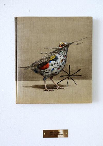 Clive Smith, 'Miró Thrush (Turdus poetess)', 7500