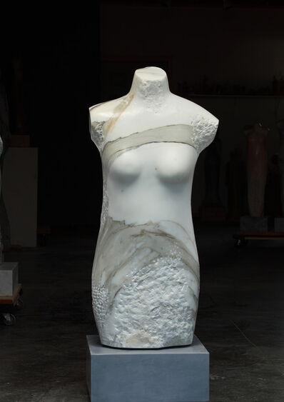 Claire McArdle, 'Torso Primavera', 2011