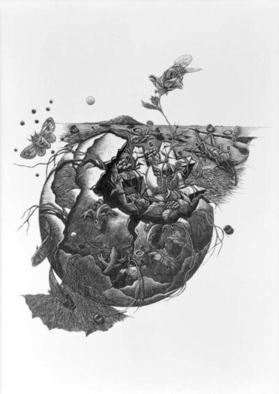 Kobayashi Keisei, 'The Charmber-No.12', 1979
